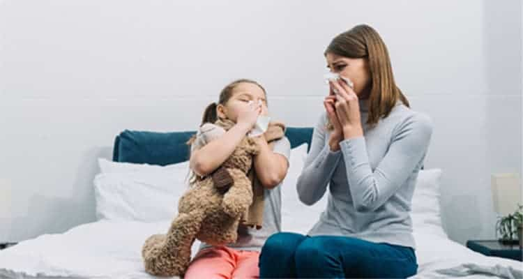 Best Humidifier For Allergies