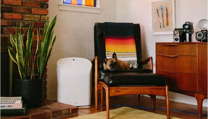 Rabbit Air BioGS 2.0 Air Purifier